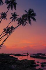 Beautiful morning on tropical coast