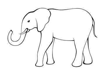Elephant black white isolated illustration vector