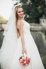 Gorgeous romantic gentle stylish beautiful caucasian bride on the background ancient baroque castle
