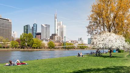 Frankfurt, Mainufer im Frühling