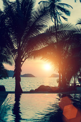 Beautiful sunset on the beach with palm trees.