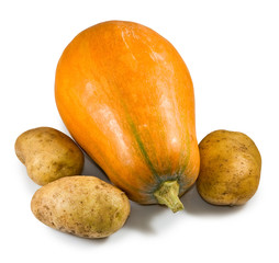 Isolated image of a ripe pumpkin and potatoes closeup