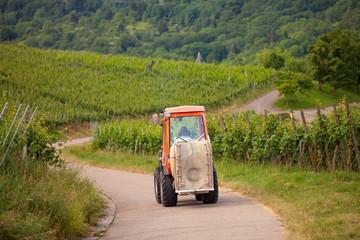 Traktor auf den Weinbergen