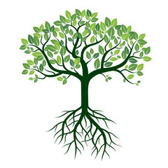 Color Tree and Roots. Vector Illustration.
