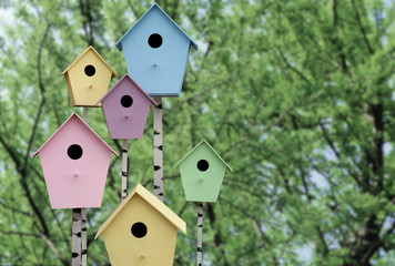 Spring mood. Multi Colored birdhouses on a background of green t