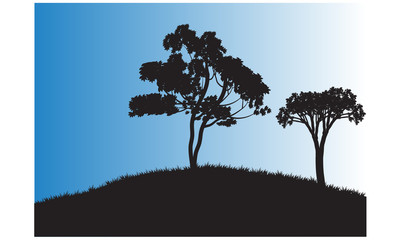 Silhouettes of two tree in the field