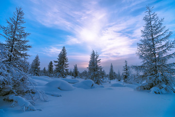 Winter landscape with forest, cloudy sky and sun and shadows. Tone.