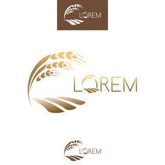 Sprout grain logo, gold ripe seedling, growing plant. Vector tem