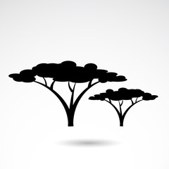 African tree vector icon.