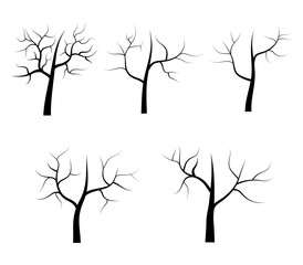 Dry vector tree on white background
