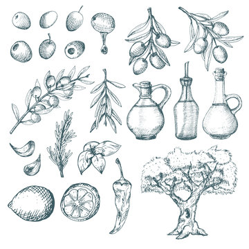 Olive products and supplements sketch.