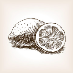 Lemon fruit hand drawn sketch style vector