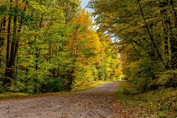 A roadway surrounded by colorful aspen and maple trees in northern Wisconsin during Autumn.