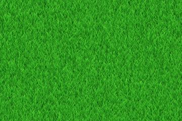 lush green freshness grass texture