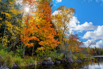 Autumn scenes along the Chippewa River in northern Wisconsin.