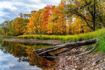 Fall colors accentuate the shorline of a remote lake in northern Wisconsin.
