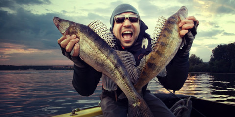 Crazy angler with zander fishing trophy