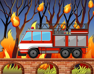 Fire truck and the wild fire at the forest