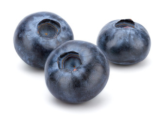 Fresh Blueberry