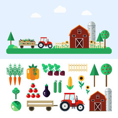 Flat farm with tractor,vegetables,barn,trees,sunflowers,water tower-vector illustration. Agricultural set - carrot,pumpkin,beet,cabbage,tomato,eggplant,cucumber,corn. Agricultural flat village.