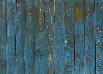 Old blue wooden fence texture.