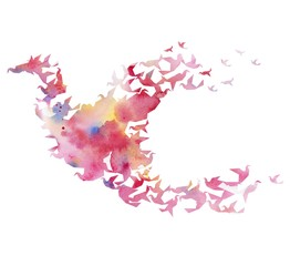 watercolor silhouette of the bird on a white background.