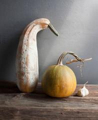 dry garlic, pumpkin, zucchini