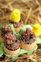 Œufs en chocolat et poussins-9877