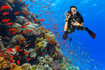Scuba diver explore a coral reef showing ok sign Wall mural