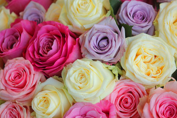 bouquet of roses of different colours