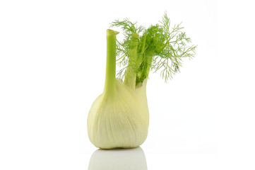 Single  isolated fennel
