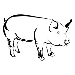 Outline pig vector illustration. Can be use for logo or tattoo