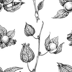 Physalis seamless pattern