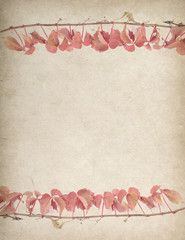 Fototapete - ivy on old grunge antique paper texture