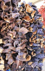 Dried Eggplant purple big harvest in conjunction