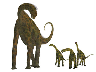 Atlasaurus Dinosaur with Babies -Atlasaurus was a large herbivorous dinosaur that lived in the Jurassic Period of Morocco, North Africa.