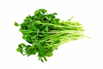 Bunch of pea shoots over a white background