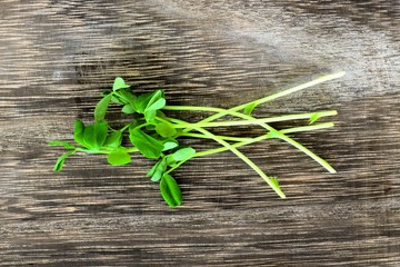 Cluster of fresh pea shoots over a rustic wood background