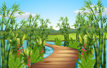 Nature scene with bamboos along the bridge