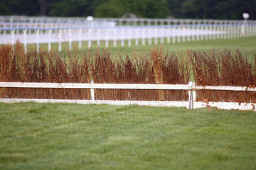 Horse racing training tracks with fence barriers