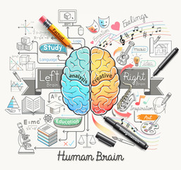 Human brain diagram doodles icons style.