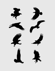 Eagle Flying Silhouette, art vector design