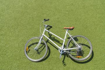 Vintage bike on lawn
