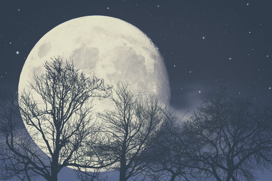 Under Moon light, abstract fantasy backgrounds