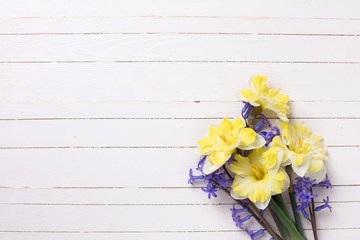 Bright  yellow and blue spring flowers   on white   painted wood