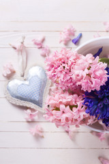 Fresh flowers hyacinths  and decorative heart on white  painted