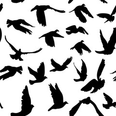 Doves and pigeons seamless pattern for peace concept and wedding design