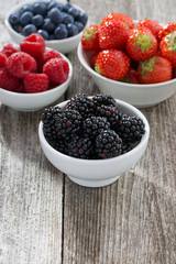 Fresh juicy garden berries, vertical