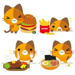 ネコとーく。三毛猫 食事