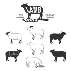 sheeps set